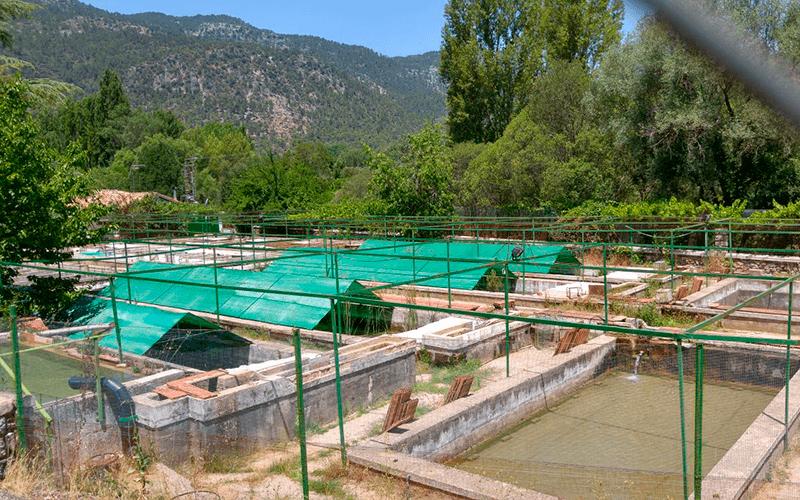 acuicultura-rabita-agrotextil